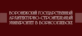Буклет ВГАСУ (БФ)